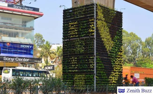 Bengaluru's Vertical Garden