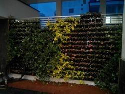 Bangalores vertical garden
