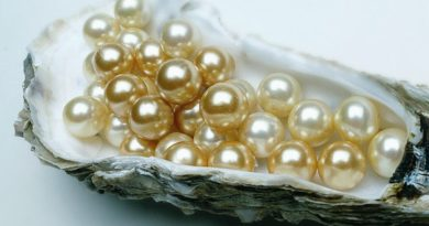 Gorgeous Caratlane Pearl Jewellery