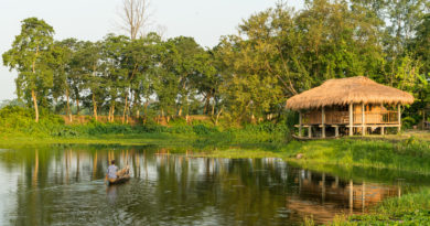 Exciting things to do at Majuli